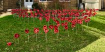 DGGS Remembrance Day Poppy Memorial